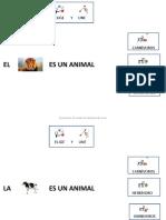 Animales Primero 2