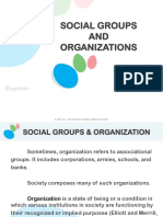 19. Social Groups and Organization