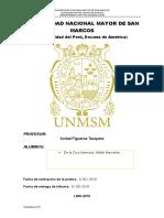 Universidad Nacional Mayor de San Marcos Fiqui