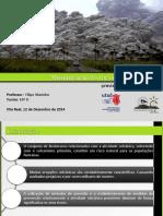 aula5-minimizaodosriscosvulcanicos-previsoepreveno-151007213518-lva1-app6891.pdf