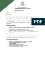 Guia de habilidades - Oxigenoterapia adulto_502.pdf