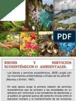 bienes_y_servicios2[1]