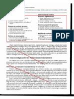 (BARNEY, J. B; HESTERLY) Liderança Em Custo x Diferenciação Do Produto