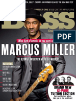 Bass Guitar April 2017p