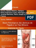 Bases patológicas das doenças do fígado e vias biliares