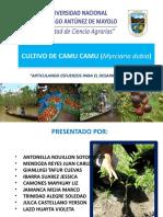 Cultivo de Camu Camu