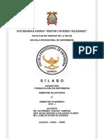 Silabo Farmacología 2019 i (1) Actual