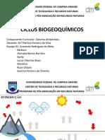 ApresentaçãoCicloBiogeoquímicos