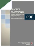 DOC-FINALES-PRACTICA (1).docx