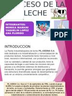 Proceso de La Leche Diapositiva1