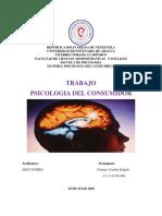 Psicologia Del Consumidor, Delgado Diunnars