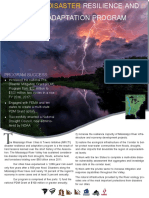 Disaster+Resilience+Prog+1-pager[2567]