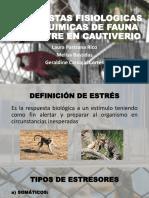 Respuestas Fisiologicas Animales F.S El Cautiverio