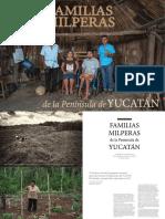 Paquete Tecnologico Para La Produccion de Papaya en Sinaloa