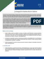 6FrentesPlanIntegralSustitucionCultivos_20150922