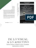 De_lo_visual_a_lo_afectivo._Practicas_ar.pdf