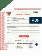 Certificado de Habilidad