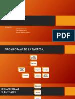 GERENCIAL ORGANIGRAMA