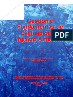 Gestion Fundamentos EIA BID Guillermo Espinoza 2007