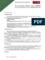 1Normas APA 6ta Edición