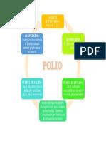 polio.docx