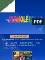 Prope Biomoleculas 1