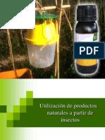 Insectos.pdf