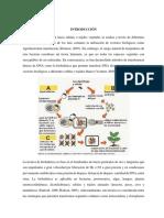 Métodos de Transformación Genética en Plantas