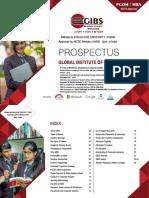 PGDM_MBA_Brochure2019.pdf