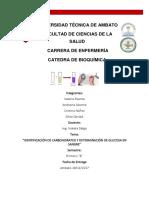 infforme bioquimica 4