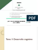 Tema 2 Desarrollo Cognitivo
