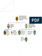 Culturas Andinas(Mapa Conceptual)