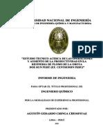 chinga_ca.pdf