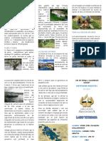 Ecosistema de La Region Puno