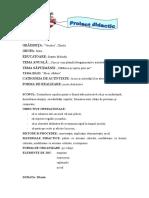 _proiectul_inspectie_mijloace