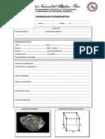 Ficha de evaluación MINEROLOGIA
