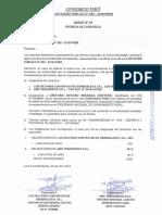 Promesa de Consorcio Peru