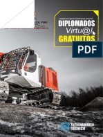 DIPLOMADOS-VIRTUALES.pdf
