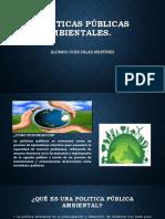 Politicas Públicas Ambientales - Iván Salas Martinez
