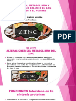 Absorción, Metabolismo y Homeostasis Del Zinc En
