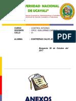 CONTROL INTERNO - EXPOSICION.pptx