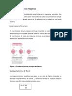 Ciclo de Carnot y Eficiencia Termica