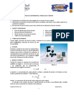 F3_04_PENDULO DE TORSION.pdf