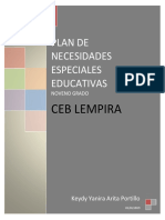Plan  de Necesidades Educativas Especiales  1