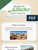 PROYECTO ALTAGRO-2