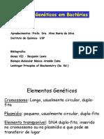 Aula2 Elementos Geneticos