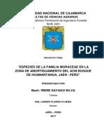Estudio de la familia Maraciae en Bosque de Huamantanga
