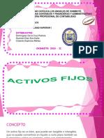 Activo Fijo PDF