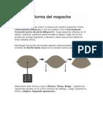Mapache.docx