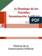 Historia de La IA - Santo Domingo